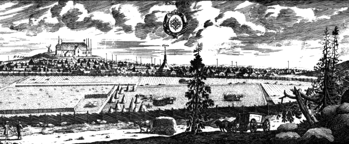 Adliga ätten Svedenhielms ursprung och släkten Swede