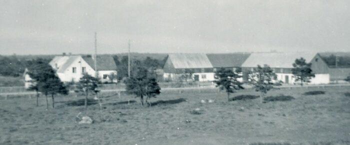 Ainbusk-systrarna Josefin och Marie Nilssons förfäder
