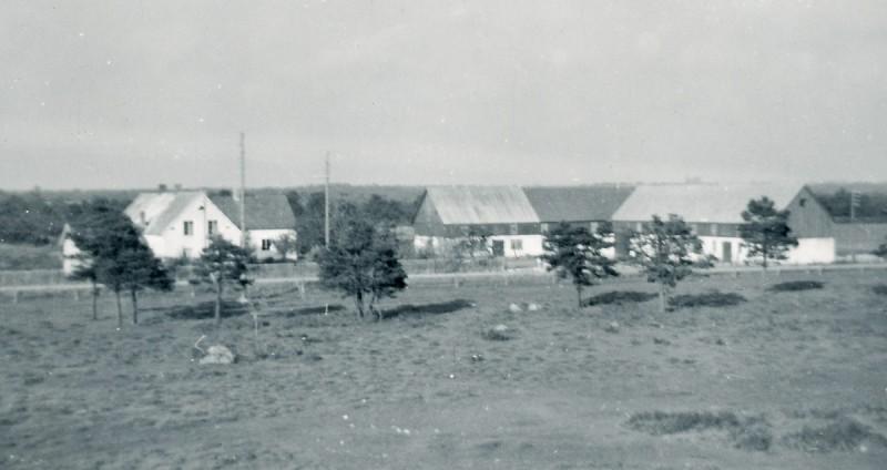 Alvare på Gotland