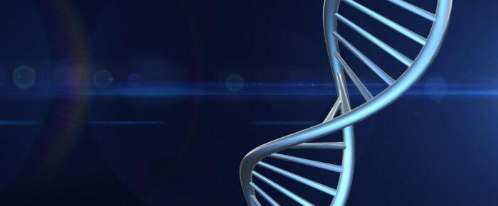 Släktforskning med DNA – vad är DNA och hur ärvs det?