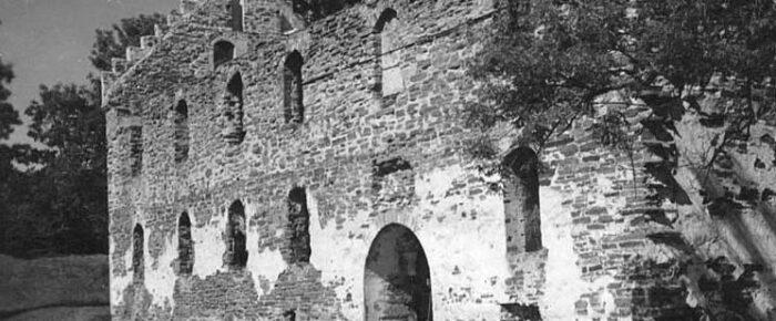Emil-Idas släkt och förfäder